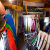 JIM VAIKNORAS/Staff photo Surf boards fill  Zapstix Surf Shop in Seabrook floor to ceiling.