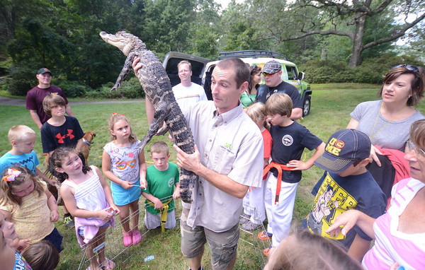 Newburyport: Corey Kummel of Curious Creatures shows off Big Al the alligator at Family Day at Maudslay Saturday. Jim Vaiknoras/staff photo 2013