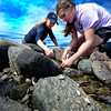 Naturalist Adrienne Lennon and Morgan Fox search for sea creatures in the tidal pool on Sandy Point on Plum Island.