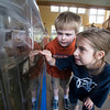 Henry Dean, 6 and Nadia Toth,7, bith of Newbury check out the Touch tank at the Joppa Center.