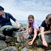 Naturalist Adrienne Lennon along with Morgan Fox,13, of North Andover, and Molly McElaney of Amesbury look for animals in the tidal pool at Sandy Point on Plum Island.