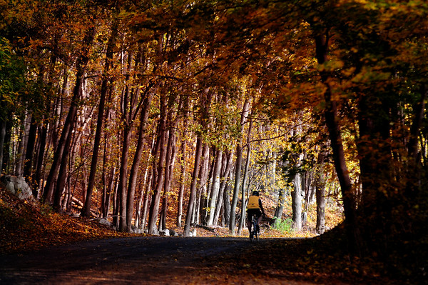 JIM VAIKNORAS/Staff photo <br /> A cyclist ride up Newman Road in Newbury on a brisk autunm day.