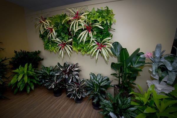JIM VAIKNORAS/Staff photo  Plantworks