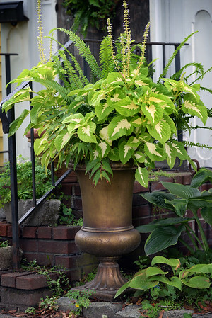 BRYAN EATON/Staff photo. Coleus and begonias fill an urn next to the front steps of his home.