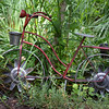 BRYAN EATON/Staff photo. Doug's father Bob gave his this old bicycle which fits into his garden.