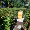 BRYAN EATON/Staff photo. A beehive set off to the side of his garden.