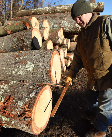 BRYAN EATON/Staff photo. Robbie measures a new load of lumber for the sawmill.