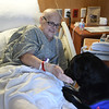 JIM VAIKNORAS/Staff photo Therapy dog Skye visits patient Marie Quigg at the Anna Jaques Hospital.