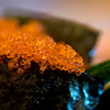 JIM VAIKNORAS/Staff photo Fish roe, part of  Sushi A set at Hanna Japan in Newburyport.
