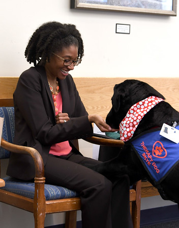 JIM VAIKNORAS/Staff photo   Therapy dog Skye greets Melanie Regis of Amesbury in the lab at the Anna Jaques Hospital.
