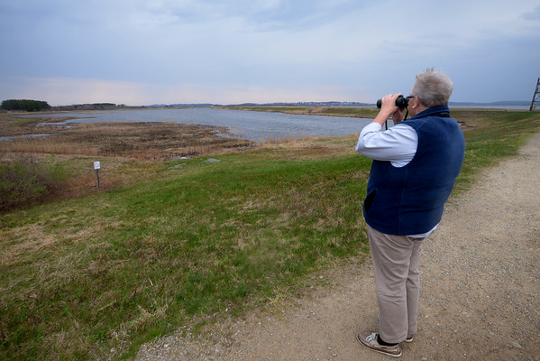 JIM VAIKORAS/Staff photo Sue McGrath looks out on Hellcat Swamp on the Parker River Refuge