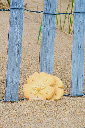 JIM VAIKNORAS/Staff photo  Plum Island Cookie Company sand dollar cookie on the beach on Plum Island.