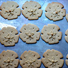 JIM VAIKNORAS/Staff photo A tray of Plum Island Cookie Company cookie right out of the oven.