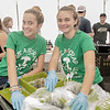 JIM VAIKNORAS/Staff photo Newburyport high students Ellen Nickodemus and Ciana Cloush help with the recycling at the The Grog's 10th Annual Charity Chili Cook-Off & Craft Beer Festival