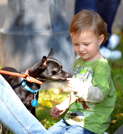 JIM VAIKNORAS/Staff photo Rowan Florentine, 2, of Newburyport give Pierce Steele a treat at an adoption event held by Last Hope K9 Rescue at teh Newburyport Library.