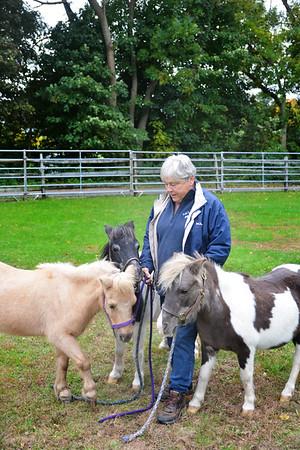 JIM VAIKNORAS/Staff photo Carol Larocque with Perri, Blue Knight and Flower at her Newbury Farm.