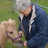 JIM VAIKNORAS/Staff photo Carol Larocque feeds Perri some grain at her Newbury Farm.