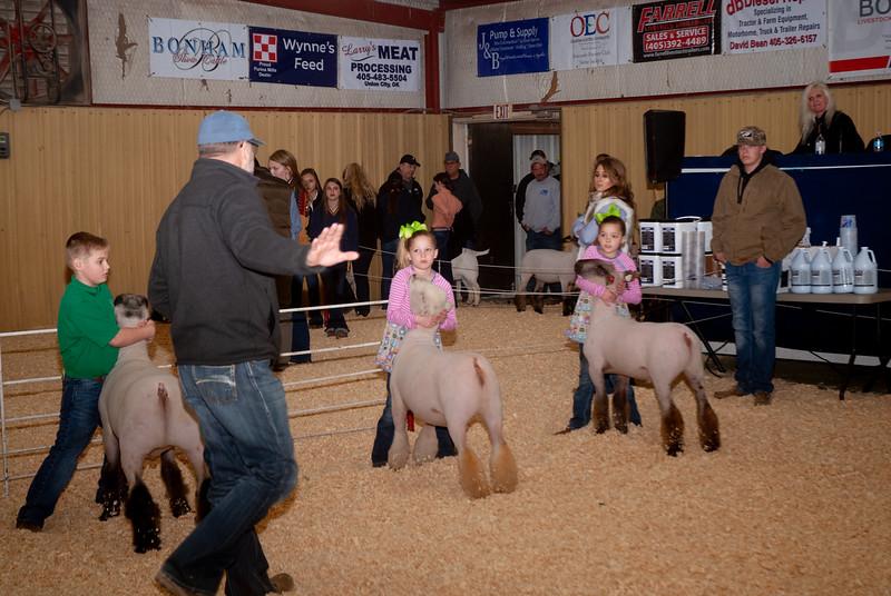 2019_newcastle_sheep&goats-1