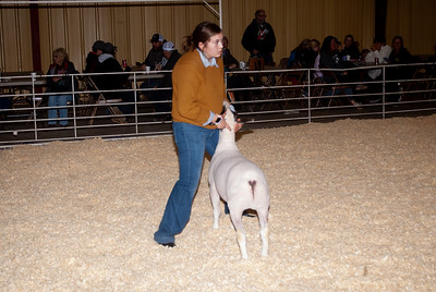 2019_newcastle_sheep&goats-18