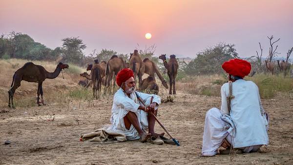 Rajasthani camel traders