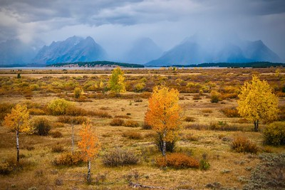 Autumn view of the sagebrush flats of Grand Teton National Park.