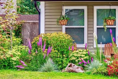 Pretty summer garden.