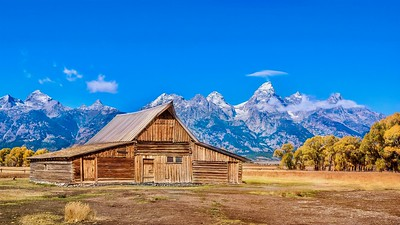 The historic T.A. Moulton Barn, a landmark along Mormon Row in an area called Antelope Flats, with the dramatic snowcapped mountain range in the background.