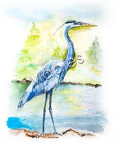 Original watercolor by Maples.