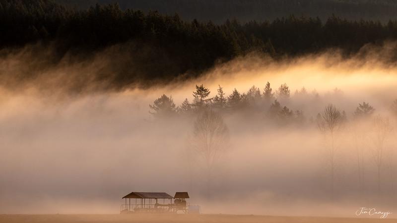 Morning Fog 03.08.2020 Redo