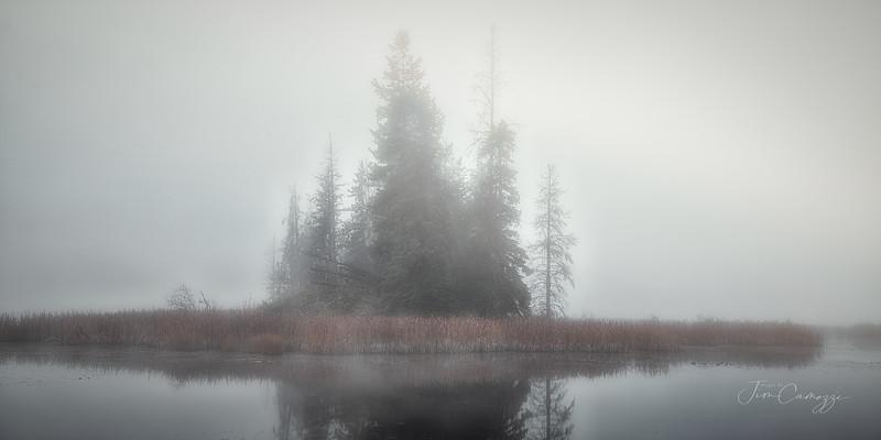 Fog Island 2021-10/08