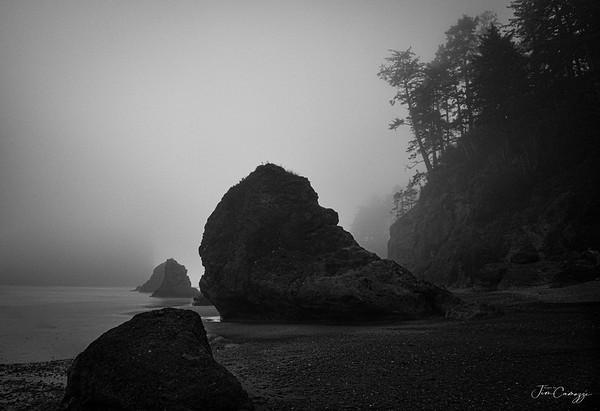 Rocked Shoreline 03.08.2020