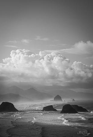 Coastline 03.08.2020