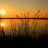 """Newest Light, Riverside: Iggy, 14 - """"Sunset"""""""