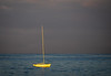 Lone Sailboat Lighted by the Sunrise