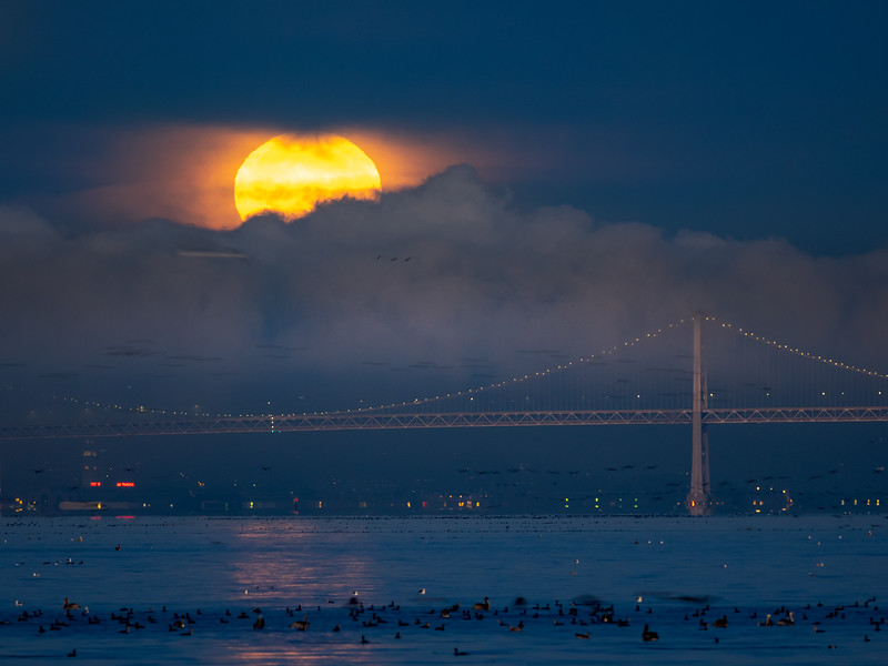 Full Moon Setting Over San Francisco Bay