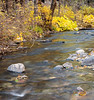 Small Creek in Late Fall