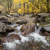 Hawkins Creek in Autumn