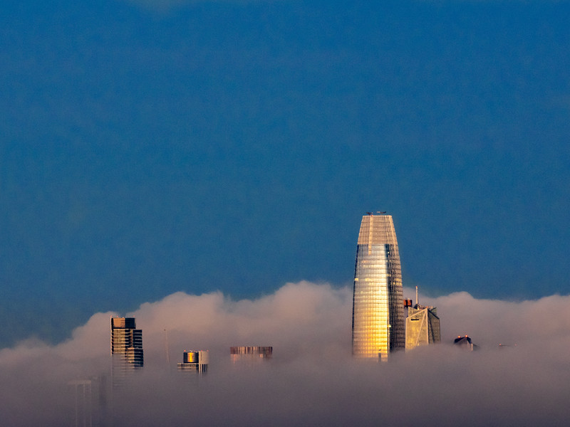 Sales Force and Neighboring Skyscrapers Rising Above the Morning Fog