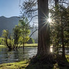 Double Sun-Star, Merced River, and Backlit Trees
