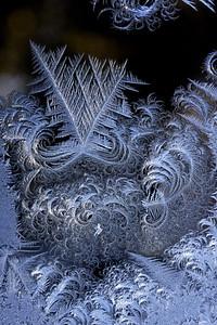 #1565  Window Frost