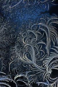#1674  Window frost