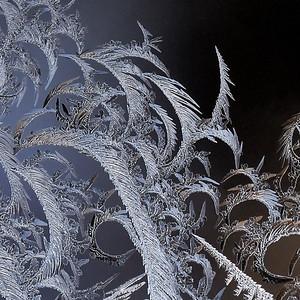 #1619  Window Frost  01-02-18