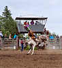 Thorhild, AB, Rodeo - July 2017