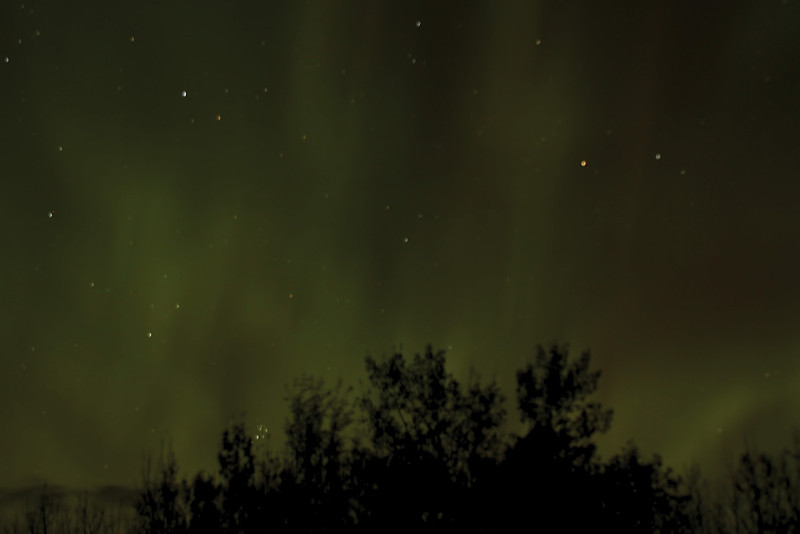 My very first attempt at Northern Lights. Not brilliant, but proud of myself nevertheless.  :o)