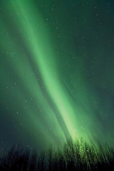 My third attempt at the Northern Lights. I think I'm improving. ;o)