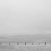 fenceline #3
