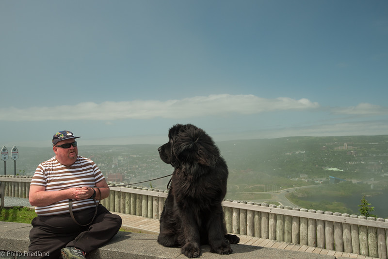 Newfy top Of Signal Hill