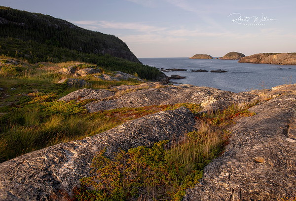 Rocks overlooking Bishop's Harbour, Salvage Newfoundland.