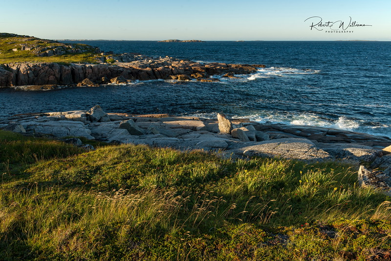 Shoreline Along the Greenspond Island Trail