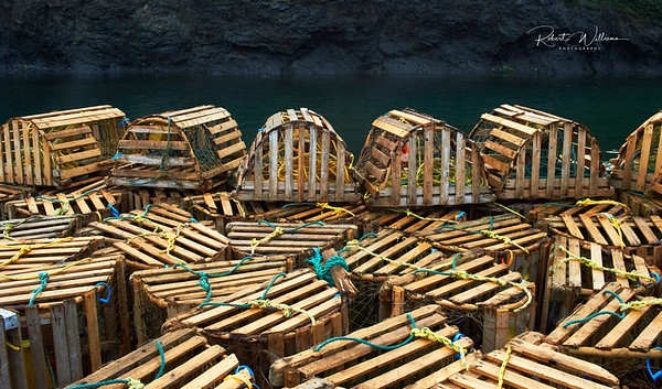 Lobster Traps in Trout River